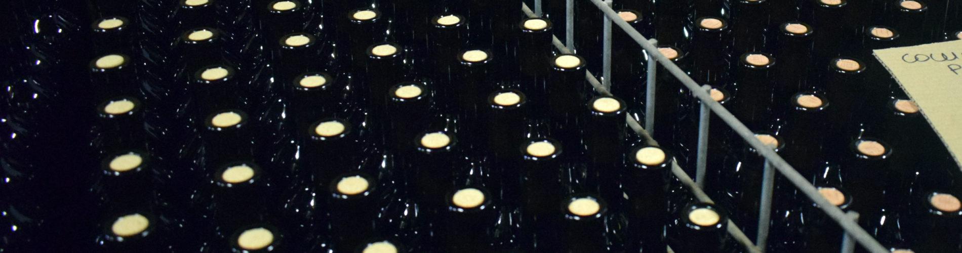 bottiglie anonime per commissioni di degustazione