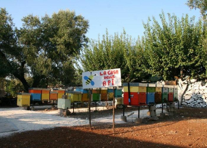 Casa delle api apicoltura puglia