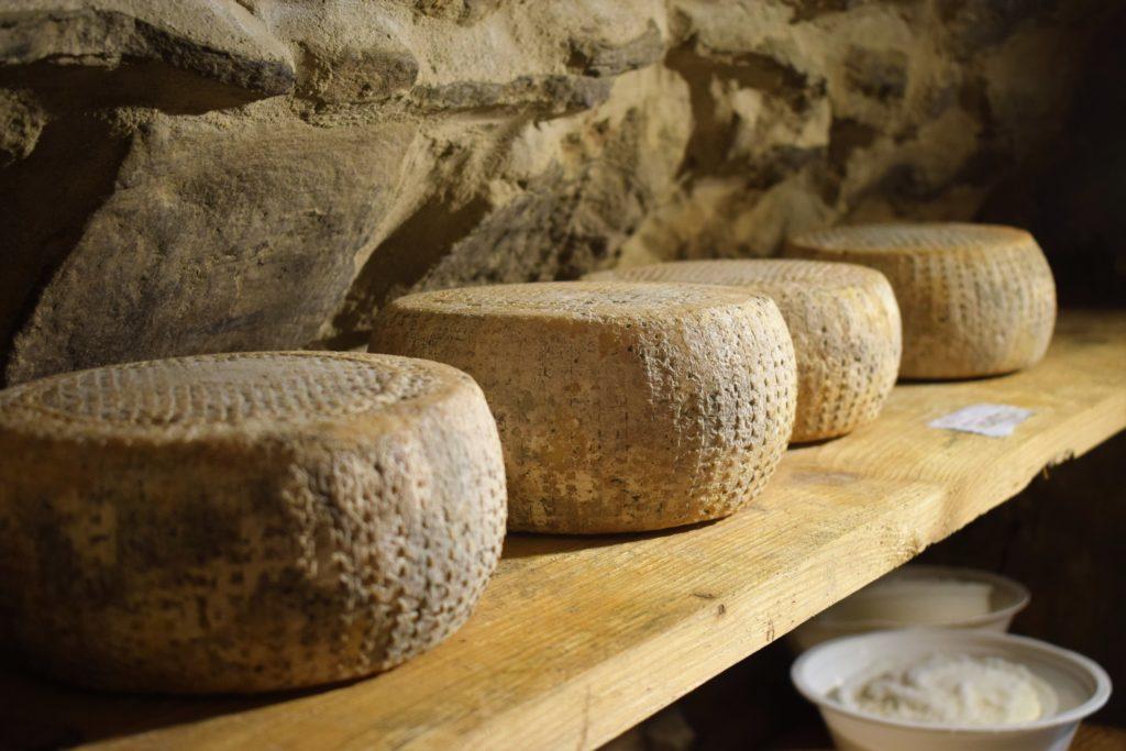 formaggi di capra azienda agricola ninfe di bosco